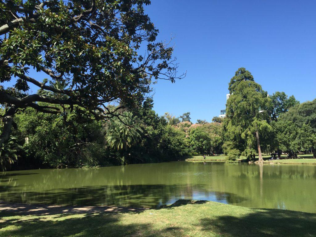 Paz total en el Lago Victoria Ocamo