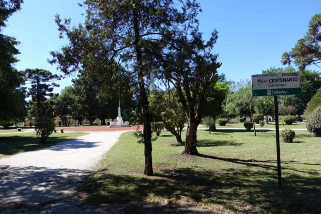 Plaza Centenario, la plaza de las mil especies de árboles, no hay uno que se repita.